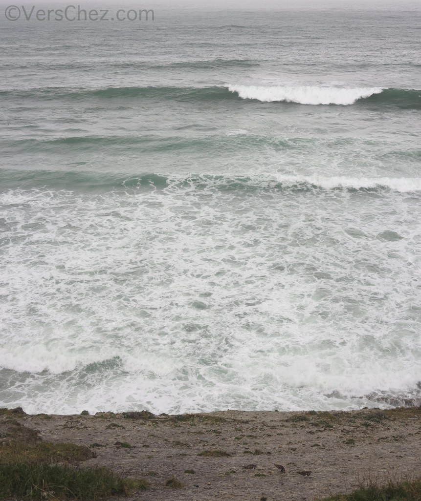 gravelots-tempete-ocean