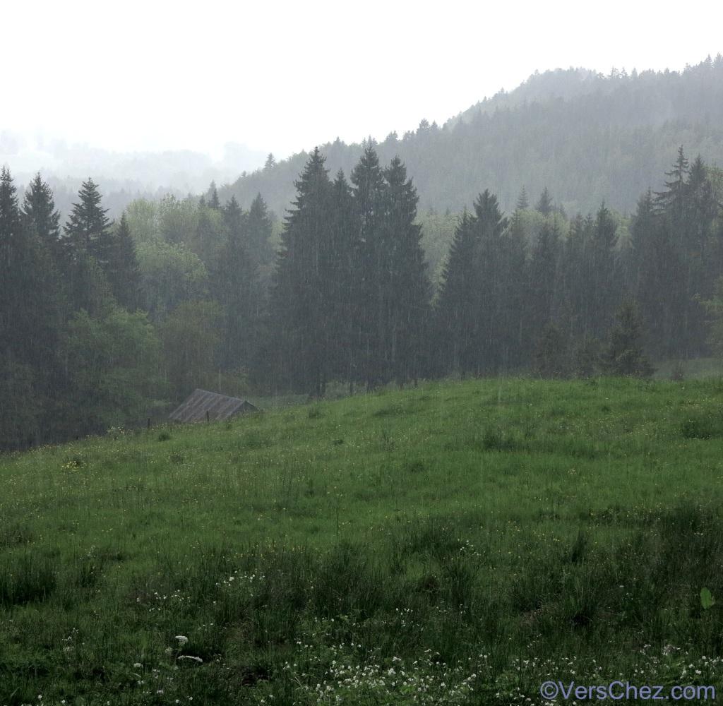 pluie-gruyere-haiku