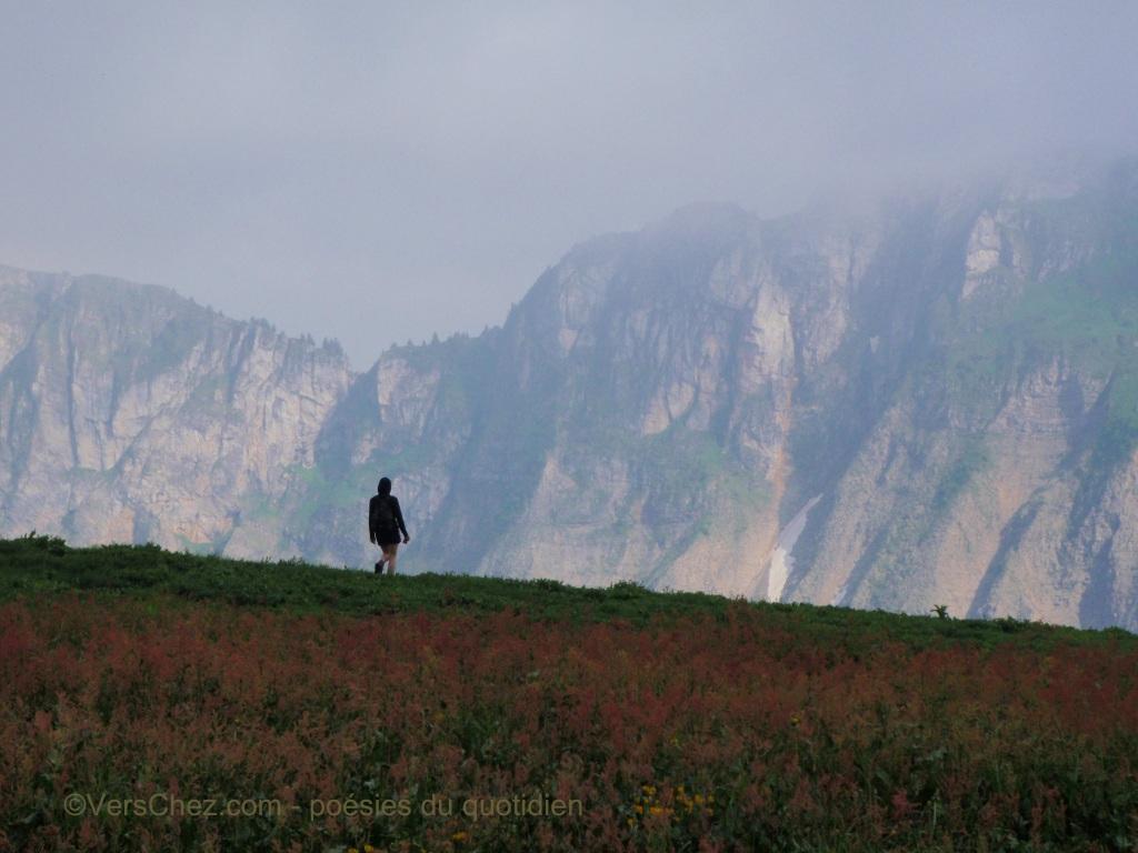 haiku montagne brouillard