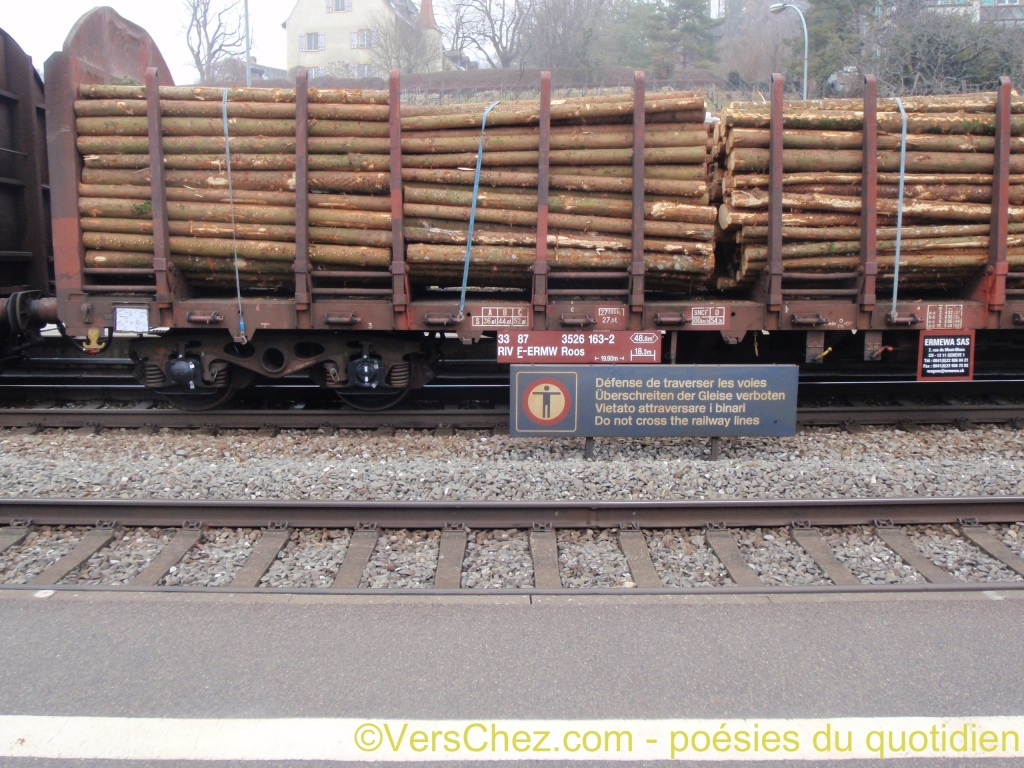 chargement bois train