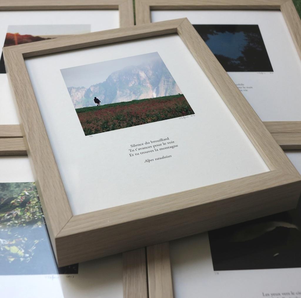 exposition-tableaux-haikus-geneve-2013
