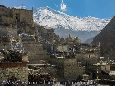 village nepal phuu