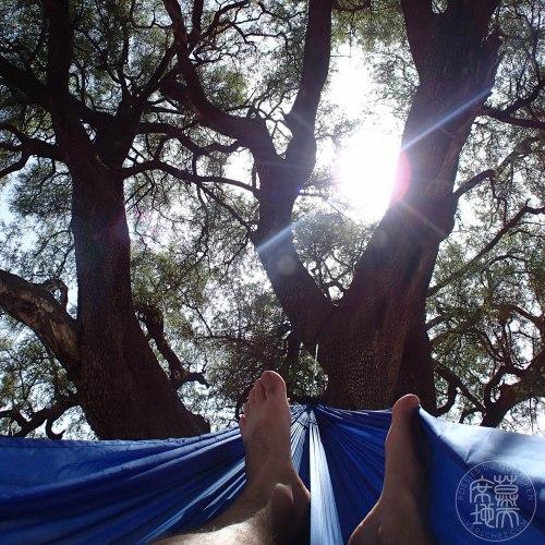 haiku-hamac-arbre-verschez