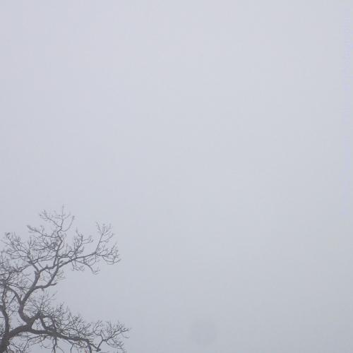 haiku-boruillard-matin-alpes