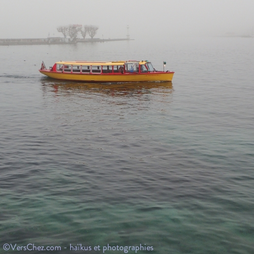 haiku-brouillard-geneve-mouette