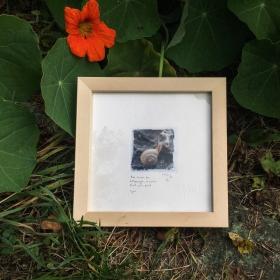 1-escargot-tableau-haiku