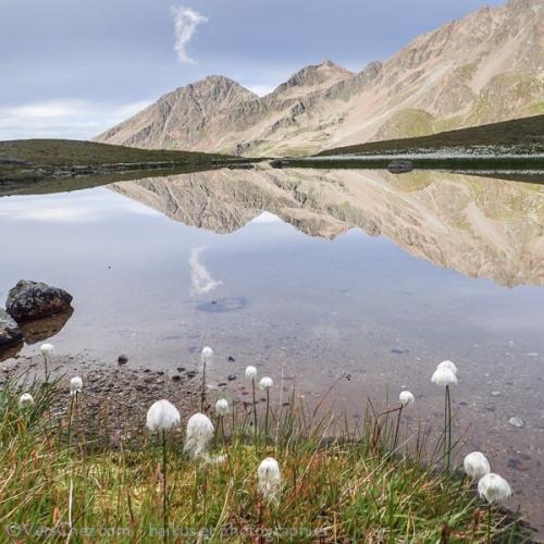 haiku-reflet-lac-alpes